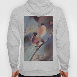 Winter birds, pastel Hoody
