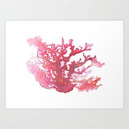 Aloha Pink Coral Watercolor Art Art Print
