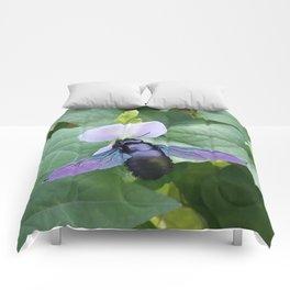 Between A Bee & A Flower Comforters