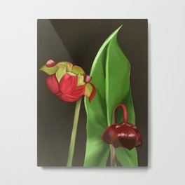 Pitcher Plant Flowers Metal Print