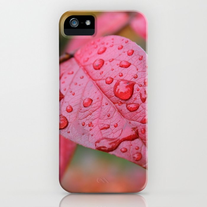 Red Leaf & Raindrops iPhone Case