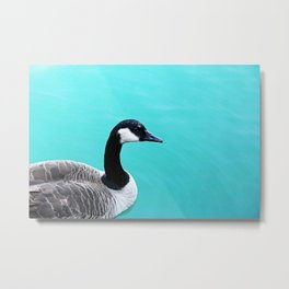 Portrait of a Goose on Lake Michigan Metal Print