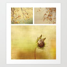 Triptych ~ Seasons Art Print