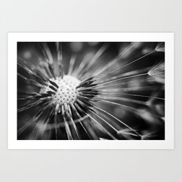 all those little pieces Art Print