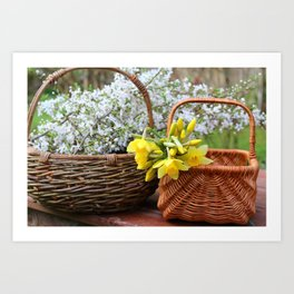 Spring Blossoms in Baskets Art Print