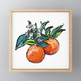 Oranges and Orange Blossom California Citrus Pattern Painting on White Framed Mini Art Print