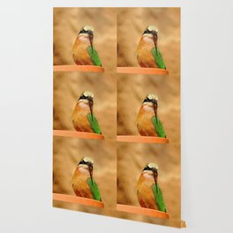 Somali bee-eater Wallpaper