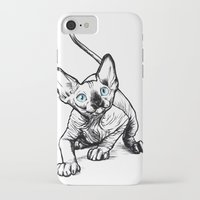 sphynx iPhone & iPod Cases featuring Sphynx by Sara (aka Wisney)