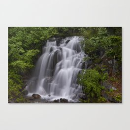Waterfall in Mt Rainier National Park Canvas Print