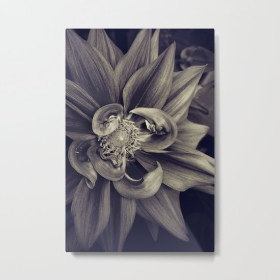 Touched Metal Print