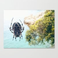 spider Canvas Prints featuring Spider by Bor Cvetko