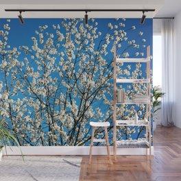Spring Blossom VI Wall Mural