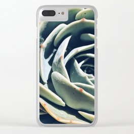 Dry garden 1 Clear iPhone Case