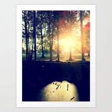 Backyard Sunset Art Print