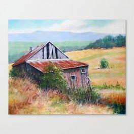 Many Seasons Past Canvas Print