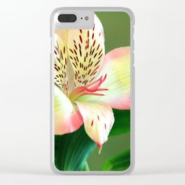 Beautiful Lillies Clear iPhone Case