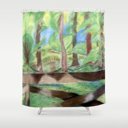Flash of Scenery Shower Curtain
