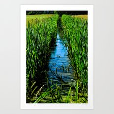 Small ditch Art Print