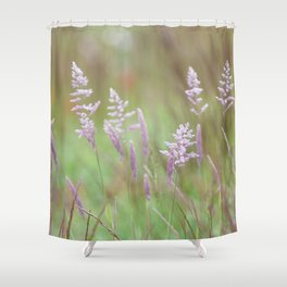 Calming Grasses at Mount Saint Helens Shower Curtain