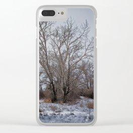 Winter Scrub Clear iPhone Case
