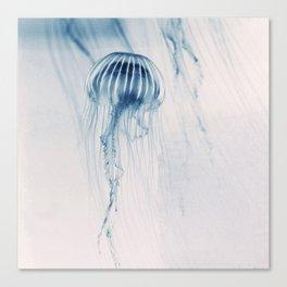 Deep Blue Sea #1 Canvas Print