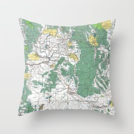 Pacific Northwest Map Throw Pillow