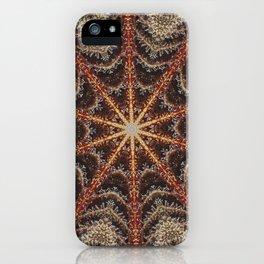 Crystal Web iPhone Case