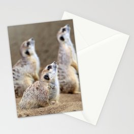 Meerkats - We're on the Lookout Stationery Cards