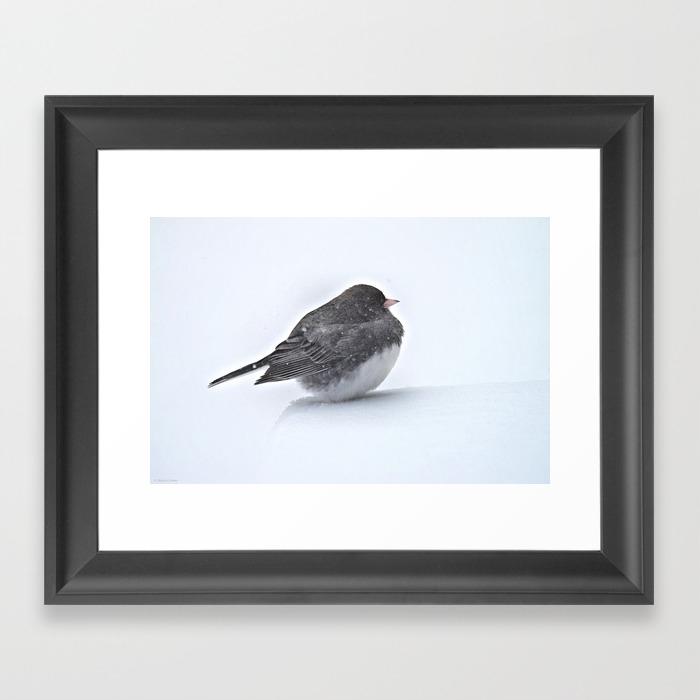 Brave Bird In A Blizzard Framed Art Print by Nancyacarter FRM6594041