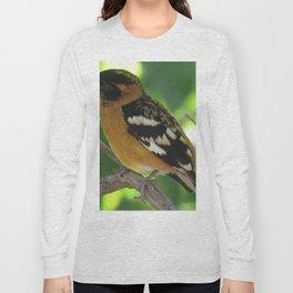 Blackheaded Grossbeak Long Sleeve T-shirt