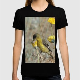 Mr. Lesser Goldfinch Feeds on Seeds T-shirt