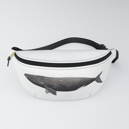 Northern right whale (Eubalaena glacialis) Fanny Pack