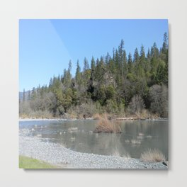 Sunshine on a Spring Day..... Metal Print