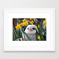 rocky Framed Art Prints featuring Rocky by Astrid Ewing