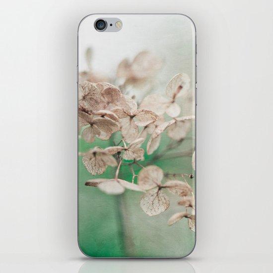 Little Furrows  iPhone & iPod Skin