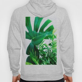 Tropical Display Hoody