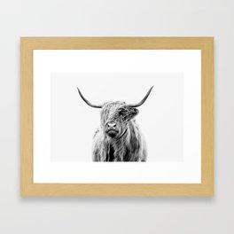 portrait of a highland cattle Framed Art Print