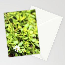 La vida  Stationery Cards