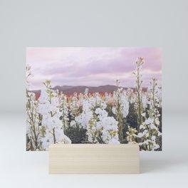 Lompoc Flower Field Mini Art Print
