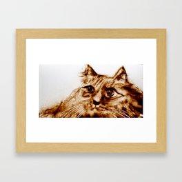 Like a Cat Framed Art Print