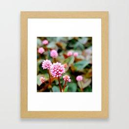 little Framed Art Print