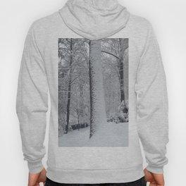 Maplewood - Snow on trees Hoody