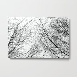 Tree Silhouette Series 2 Metal Print