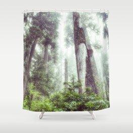 Dreamy Forest Fog Shower Curtain