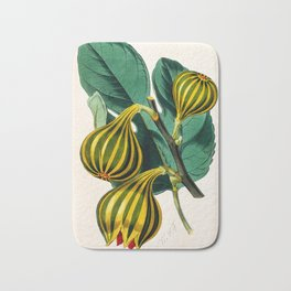 Fig plant, vintage illustration Bath Mat