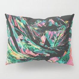 BEYOMD Pillow Sham