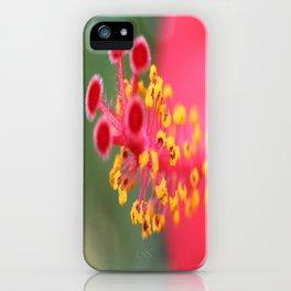 Macro Close Up Of Hibiscus Pollen  iPhone Case