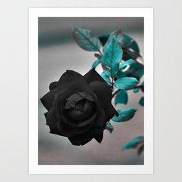 Black Roses 1 Art Print
