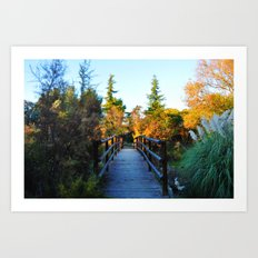 Wood Bridge Art Print