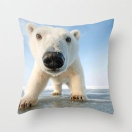 Super Cute Adolescent Polar Pear Checking Out Camera Close Up Ultra HD Throw Pillow